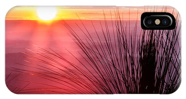 Grasstree Sunset IPhone Case