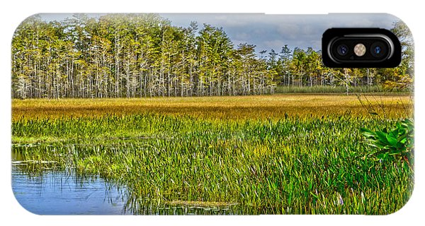 Grassy Waters IPhone Case