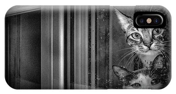 Humor iPhone Case - Gray Days by Fernando Jorge Gon?alves