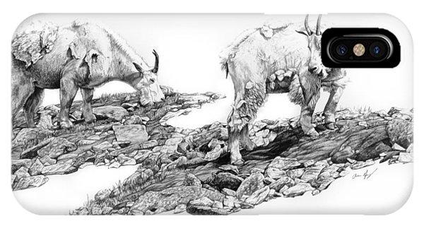 Rocky Mountain Bighorn Sheep iPhone Case - Grazing by Aaron Spong