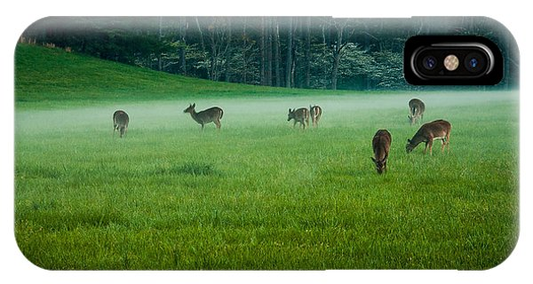 Grazing Deer IPhone Case