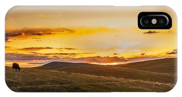 Grazing Sunset IPhone Case
