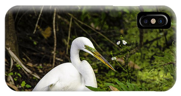 Great Blue Heron - White IPhone Case