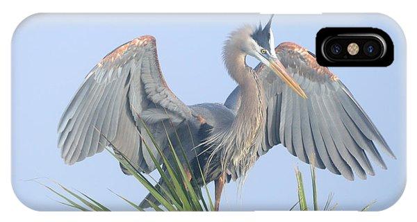 Great Blue Heron Displaying IPhone Case