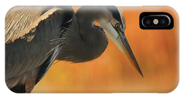 Great Blue Heron Focus IPhone Case