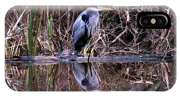 Great Blue Heron Reflecting Phone Case by Gene Chauvin
