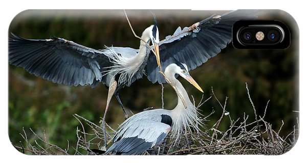 Great Blue Herons Nesting IPhone Case