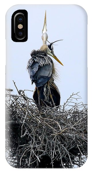 Great Blues IPhone Case