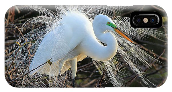 Great Egret Show Off IPhone Case