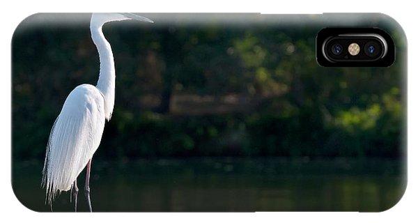 Great Egret At Water's Edge Phone Case by K Jayaram
