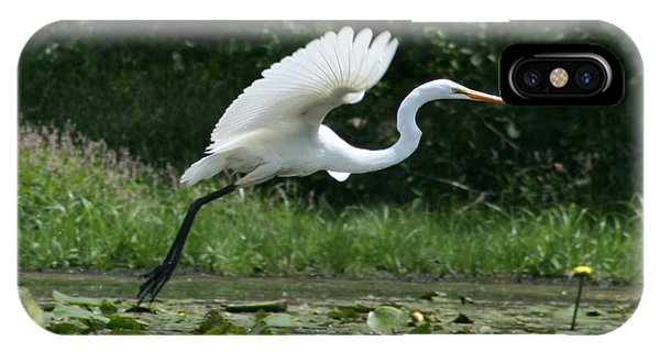 Great Egret Elegance   IPhone Case
