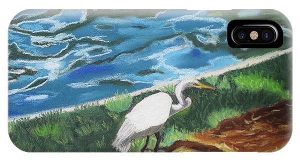 Great Egret In Florida IPhone Case