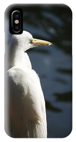 IPhone Case featuring the photograph Great Egret by Kristia Adams