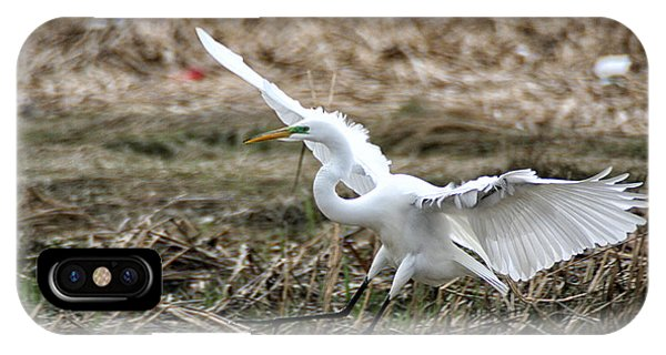 IPhone Case featuring the photograph Great Egret Landing by William Selander
