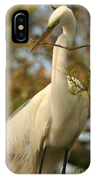 Great Egret Impressions IPhone Case