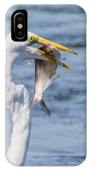 Great Egret With Fish IPhone Case