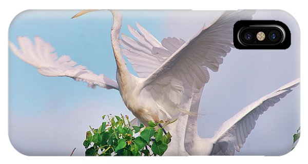 Great Egrets Parents And Young (ardea IPhone Case