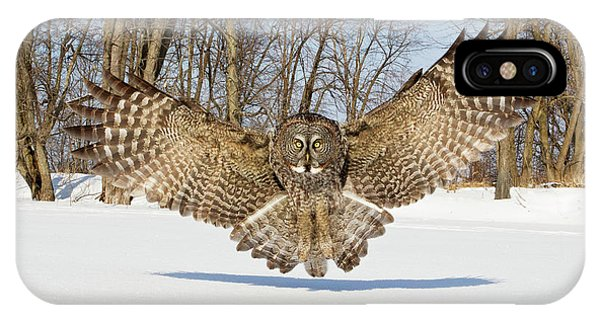 Winter iPhone Case - Great Grey Owl Attack by Rick Dobson