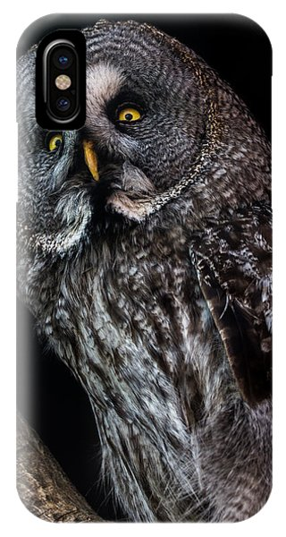 Great Grey Owl Phone Case by Gerard Pearson