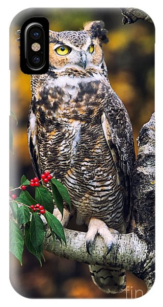 Great Horned Owl IIi Phone Case by Todd Bielby