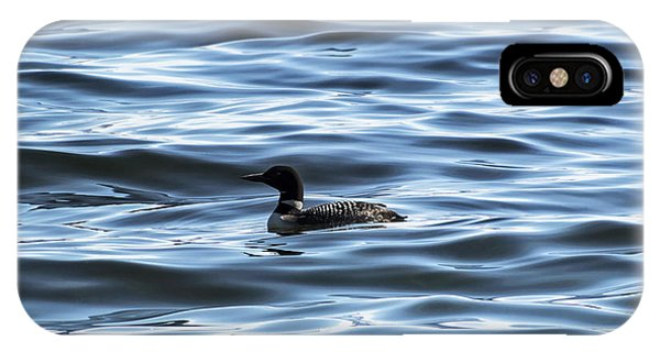 Great Northern Loon IPhone Case