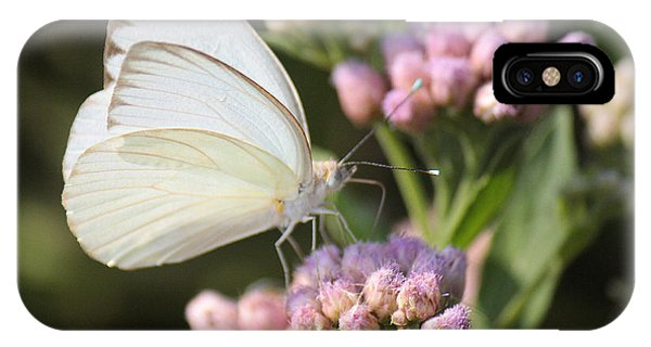 Great Southern White Butterfly On Pink Flowers IPhone Case