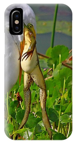 Great White Egret And Frog IPhone Case