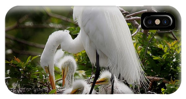 Great White Egret Nesting IPhone Case
