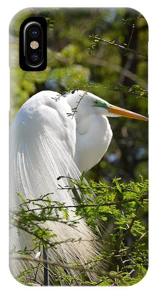 Great White Egret On Nest IPhone Case