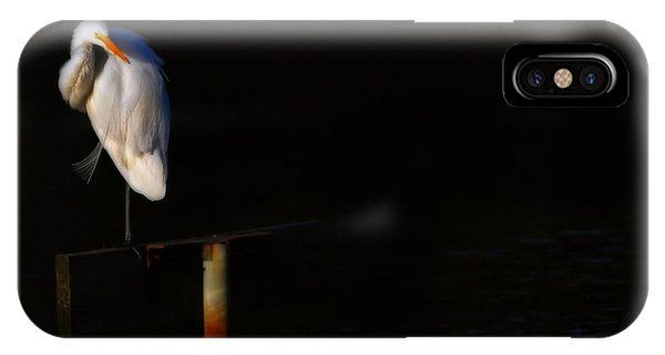 Great White Evening IPhone Case