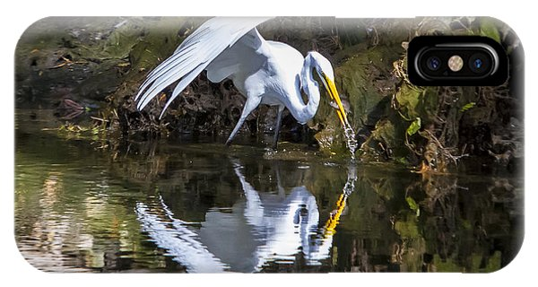 Great White Heron Fishing IPhone Case