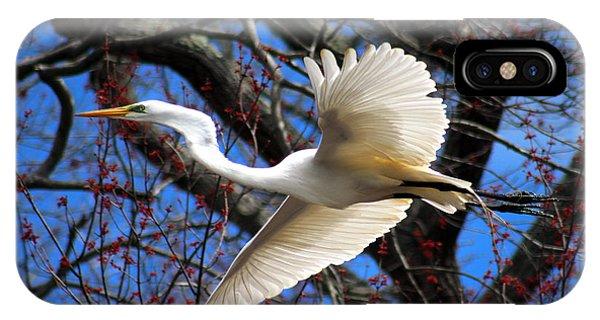 Great White Heron Islip New York IPhone Case