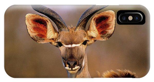Greater Kudu Phone Case by Tony Camacho/science Photo Library