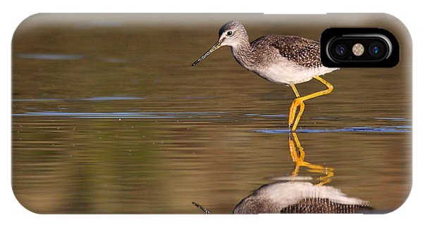 Greater Yellow Legs IPhone Case