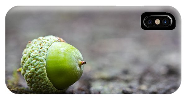 Green Acorn. IPhone Case