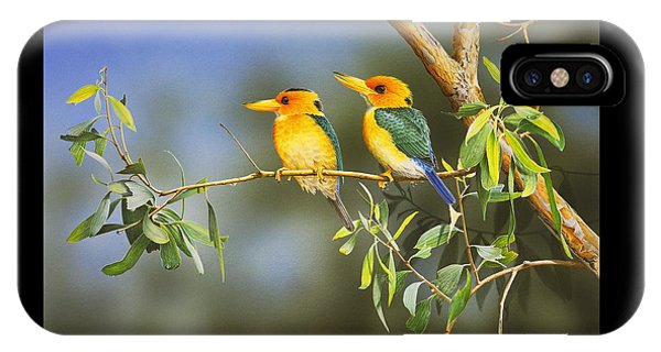 Green And Gold - Yellow-billed Kingfishers IPhone Case