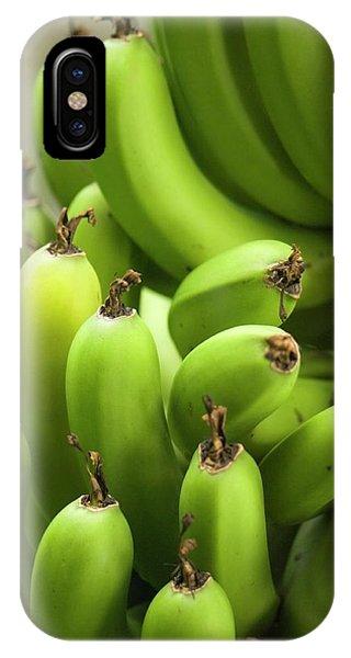 Hybrid iPhone Case - Green Banana Fruits (musa Hybrid) by Maria Mosolova