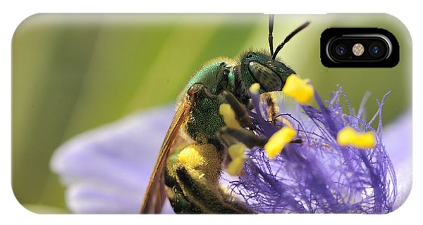 Green Bee IPhone Case