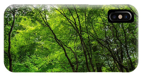 Green Canopy IPhone Case