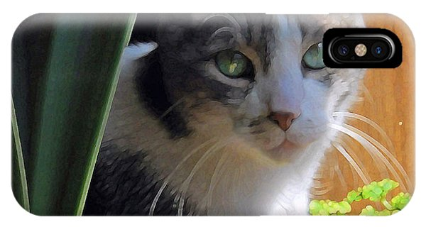 Green Eyed Cat IPhone Case