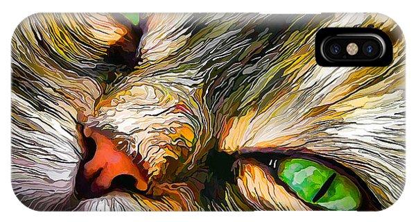 Green-eyed Tortie IPhone Case
