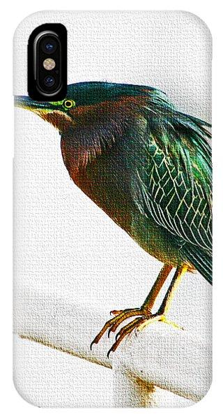 Green Heron In Scottsdale IPhone Case