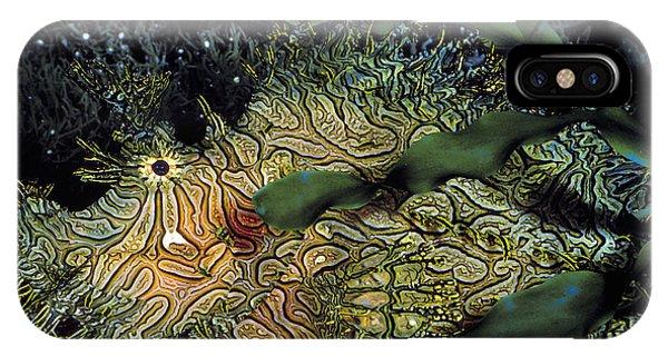 Wildlife Er iPhone Case - Green Lace Scorpionfish by ER Degginger