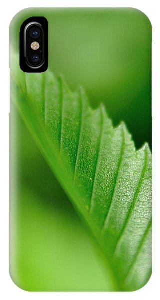 Green Leaf 002 IPhone Case
