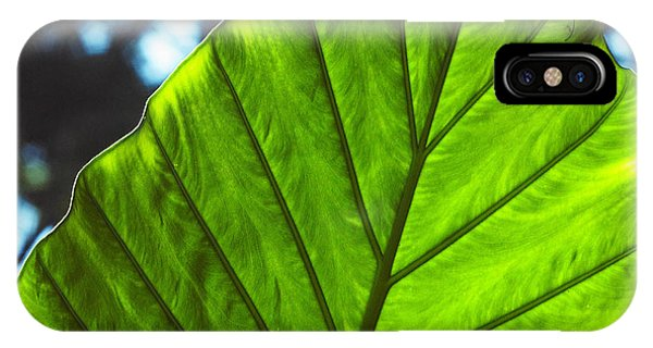 Green Leaf Trilogy II IPhone Case