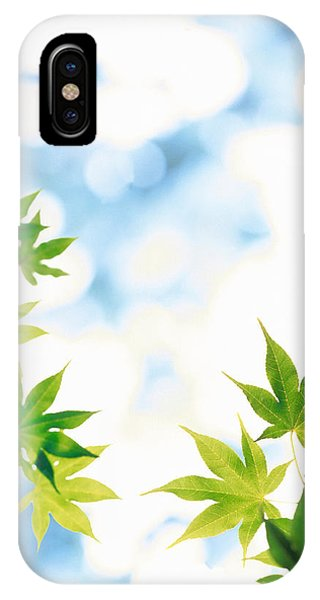 Mottled iPhone Case - Green Leaves On Mottled Cloudy Sky by Panoramic Images