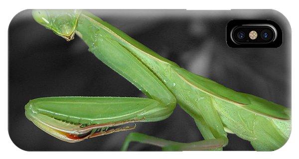 Green Mantis IPhone Case