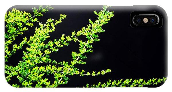 Green No. 10 - Street Lamp Phone Case by Phoresto Kim