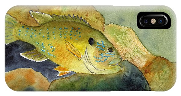 Green Sunfish Phone Case by Paul Temple