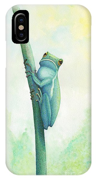 Pen And Ink Drawings For Sale iPhone Case - Green Tree Frog by Wayne Hardee